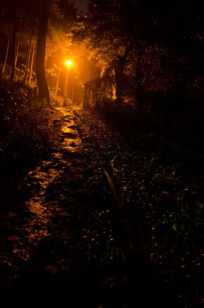 baesan-path-DSC_7785