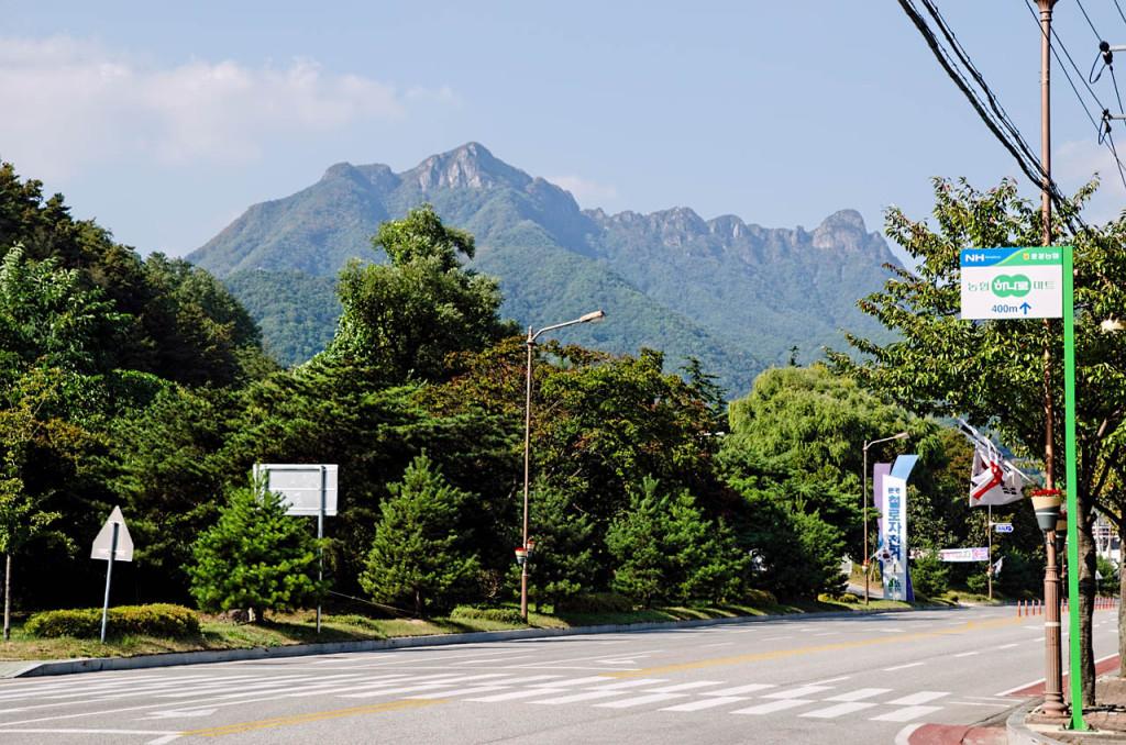 hills-DSC_9073