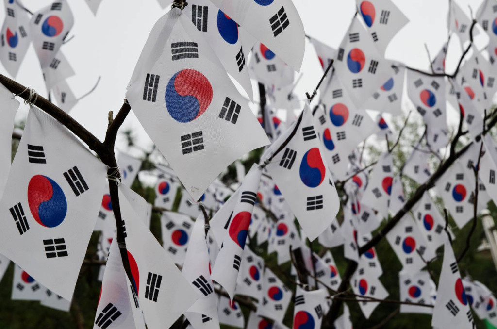 korean-flag-tree-DSC_8855