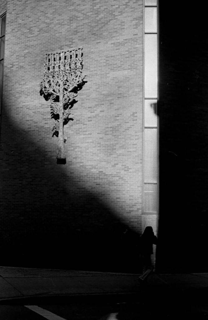 shadow-ny
