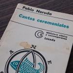 cantos-ceremoniales-DSC_2563