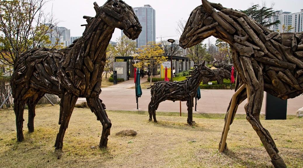 horses-DSC_3510