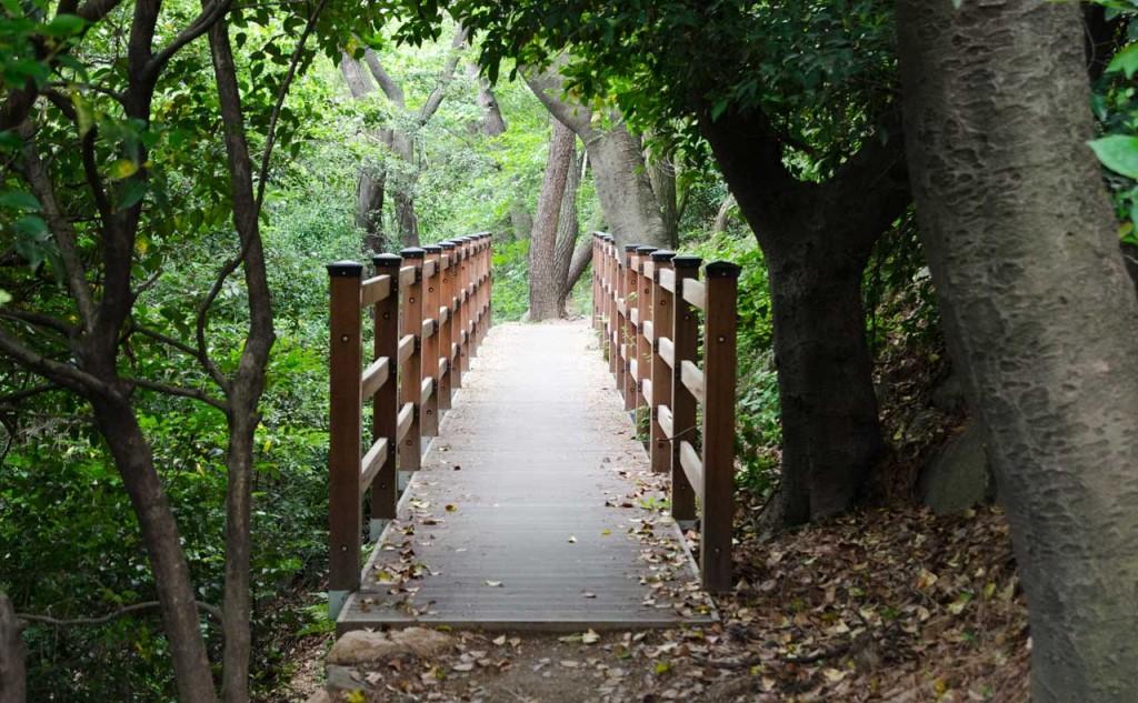 bridge-DSC_4719