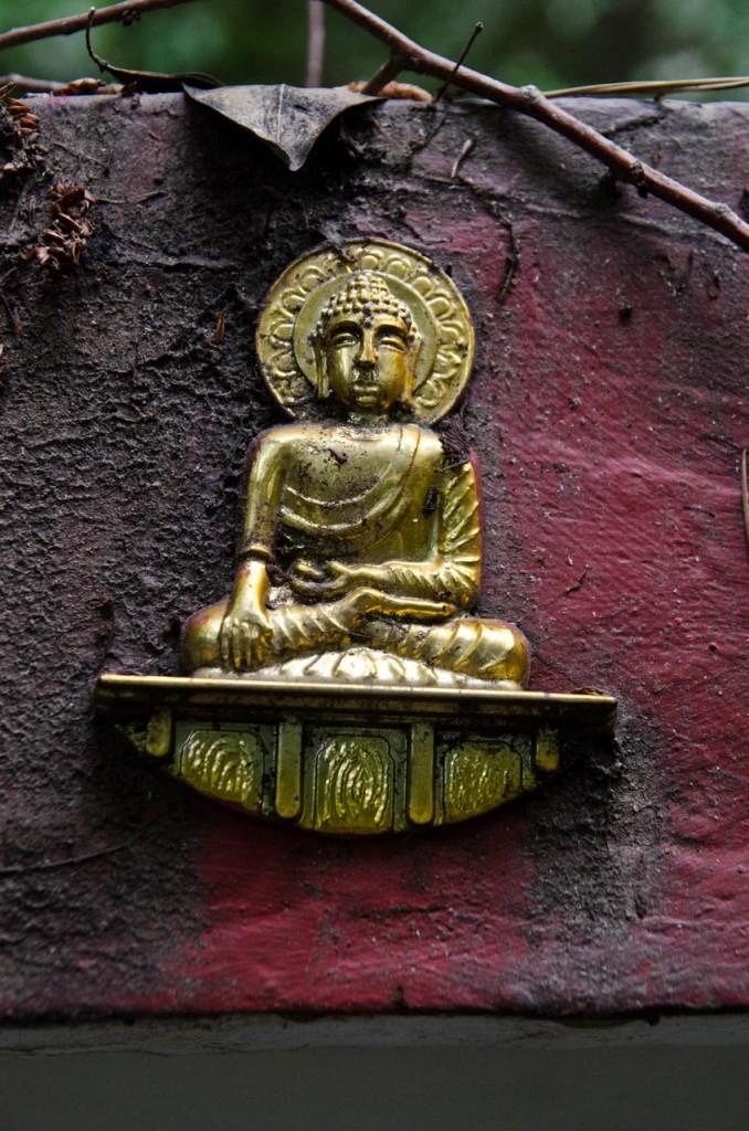 little-buddha-DSC_4647