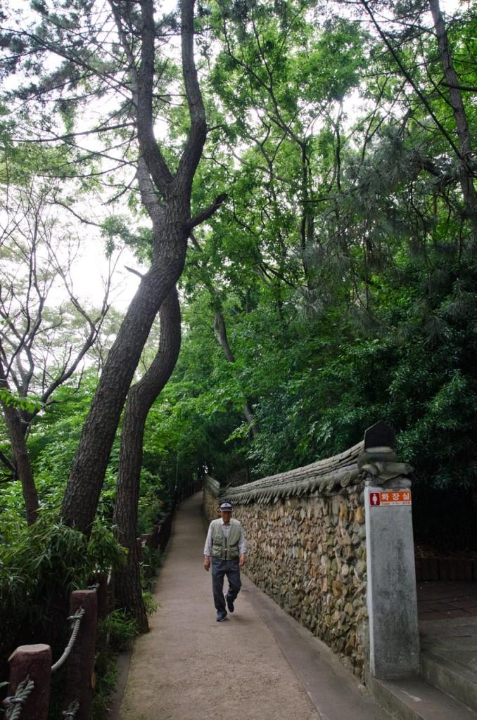 path-DSC_4636