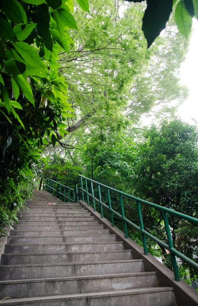 stairs-DSC_4632