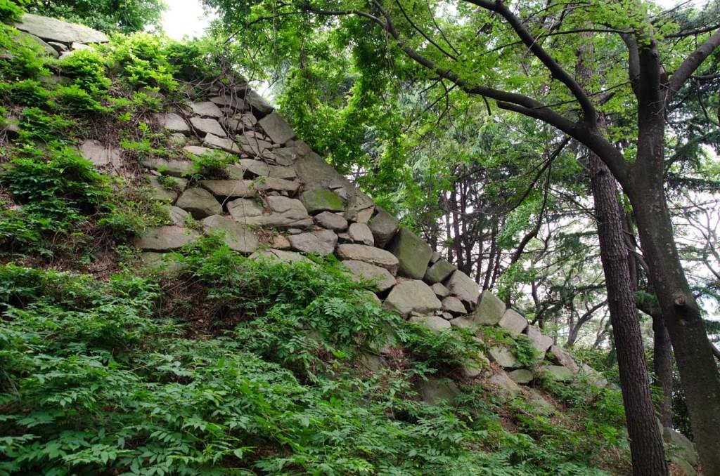 wall-DSC_4702