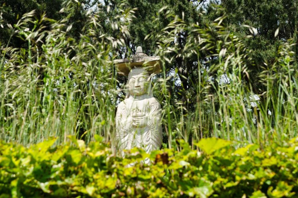 gupo-buddha-DSC_5011