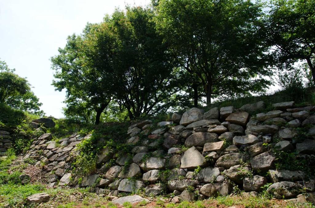wall-DSC_5043