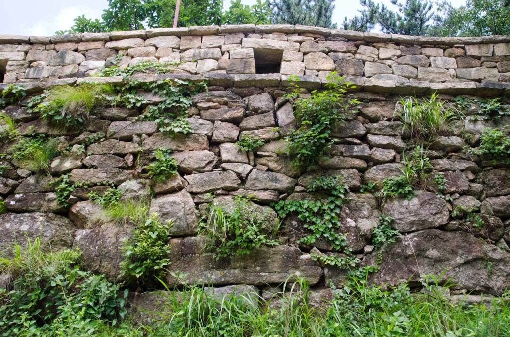 wall-DSC_7210