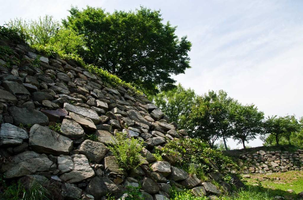 wall-east-DSC_5030