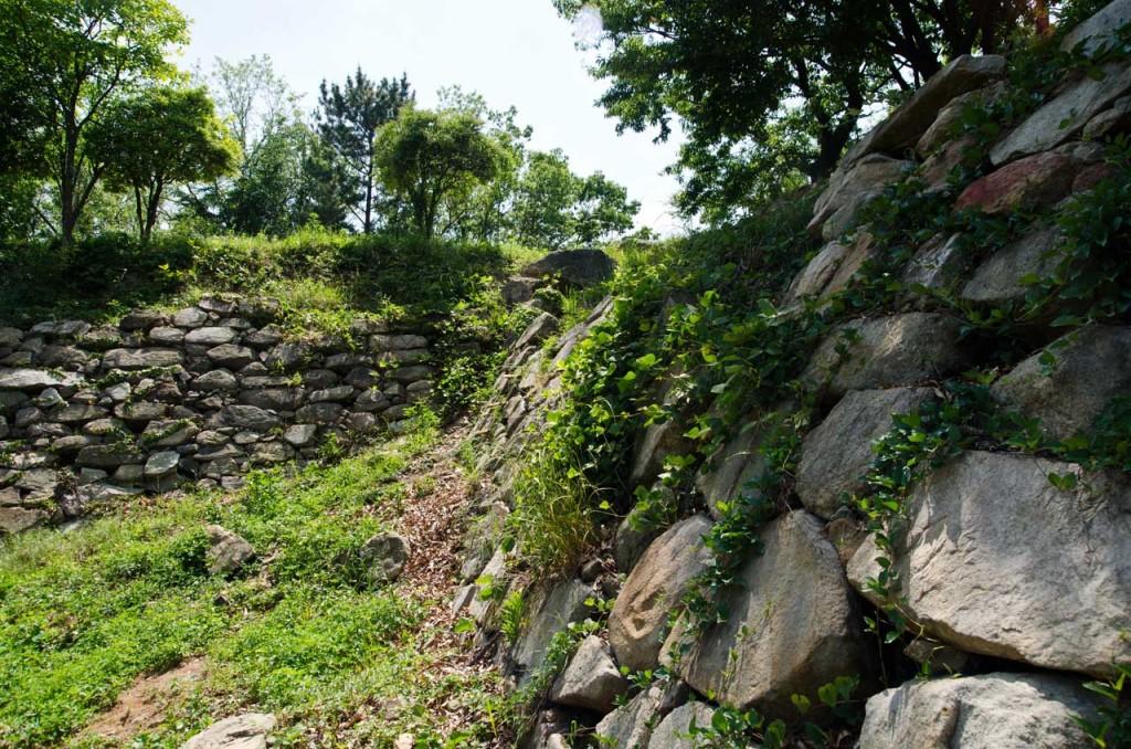 wall-east-DSC_5041