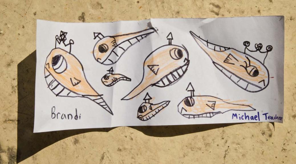 seamonkeys-brnadi-DSC_3159