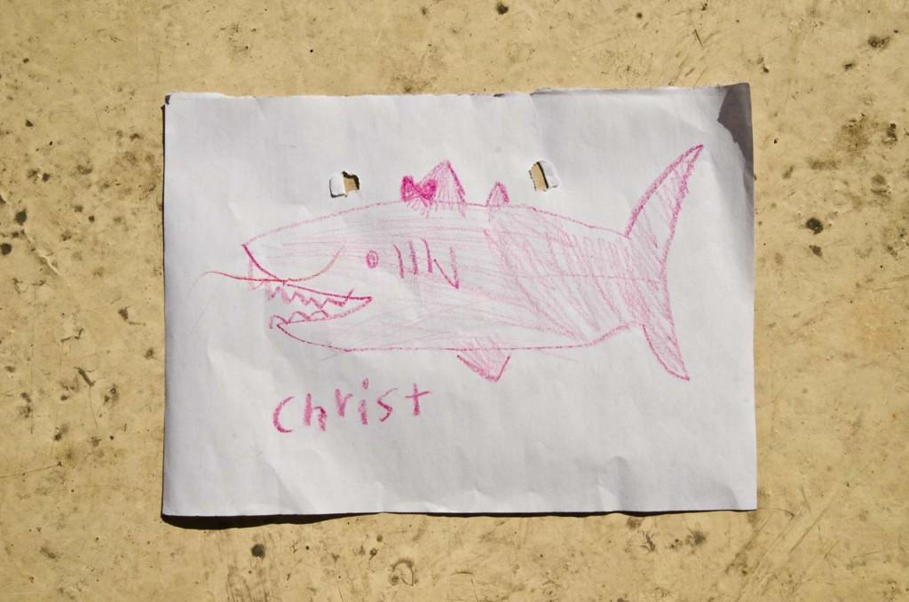 shark-christina-DSC_3158