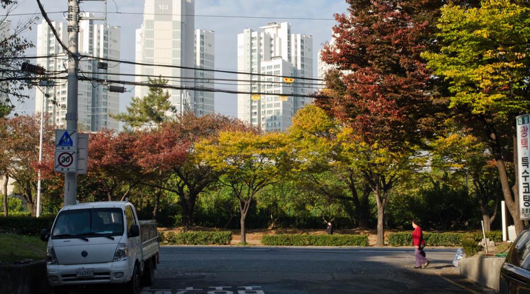 jaesong-nov-2015-DSC_0864