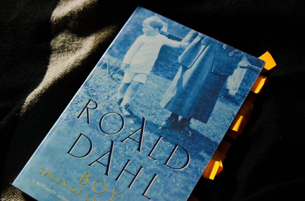 boy-dahl-DSC_0988