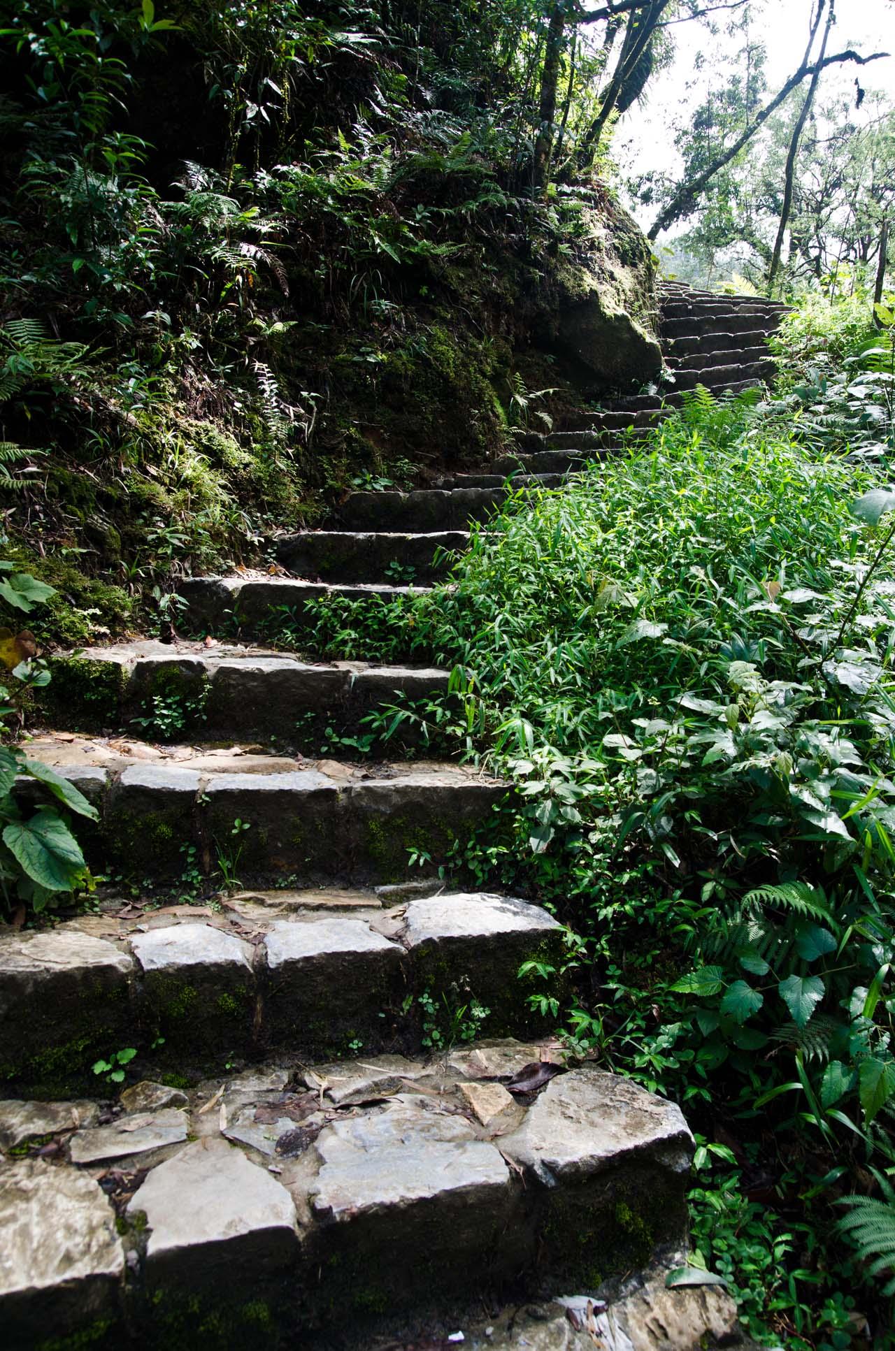 steps-DSC_3517