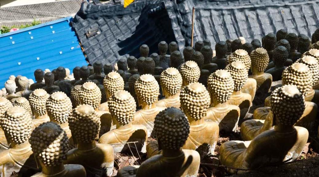 buddhas-DSC_1678
