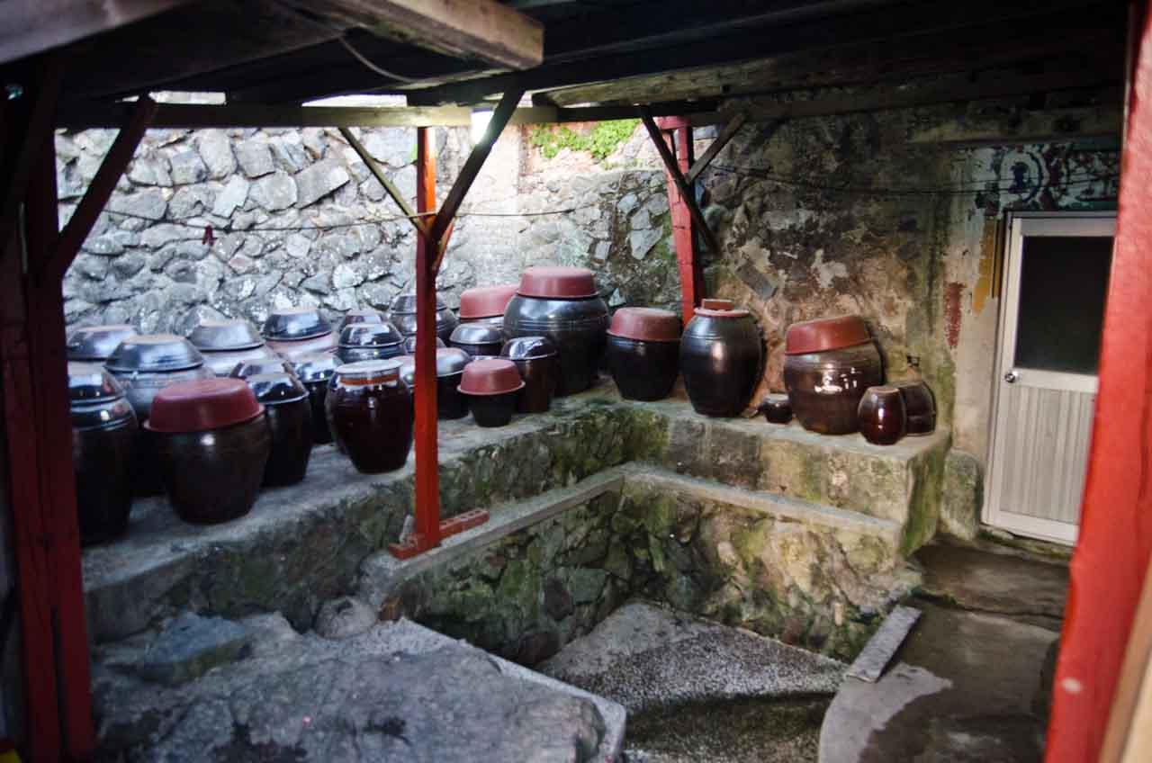 pots-DSC_1739